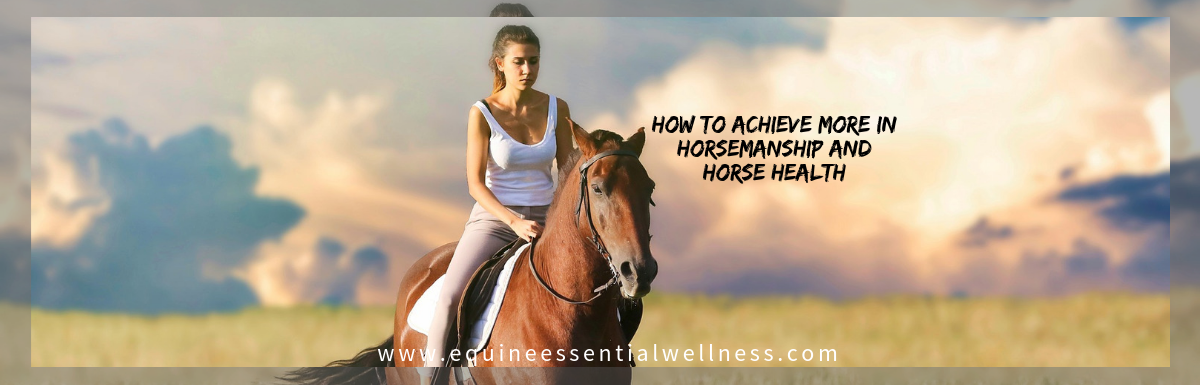 How to Achieve More in Horsemanship and Horse Health